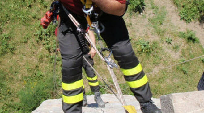 Provaglio Iseo cane scivola in un dirupo I vigili del fuoco lo salvano