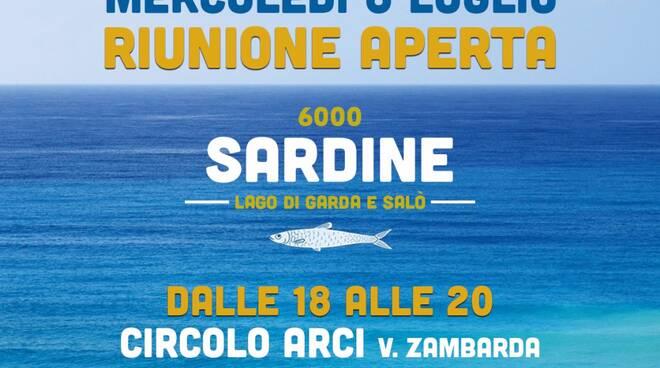 sardine gardesane