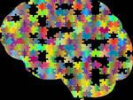 spettro autistico