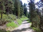 Strade agro silvo pastorali 3 8 milioni dal Pirellone a Brescia