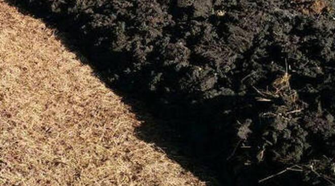 Carpenedolo mezzo agricolo si ribalta carico di fanghi sulla strada