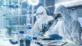 coronavirus ricerca