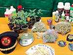 Gardone Vt disoccupato coltiva marijuana in casa arrestato
