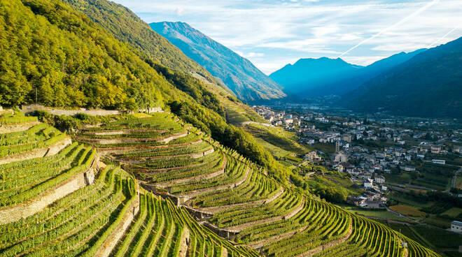 agricoltura montagna terrazzamenti