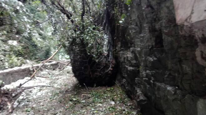 Neve e caduta massi: chiusa la Strada della Forra sul Garda
