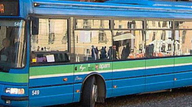 Apam autobus trasporti