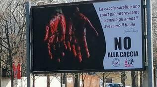 Manifesto anti caccia Leal