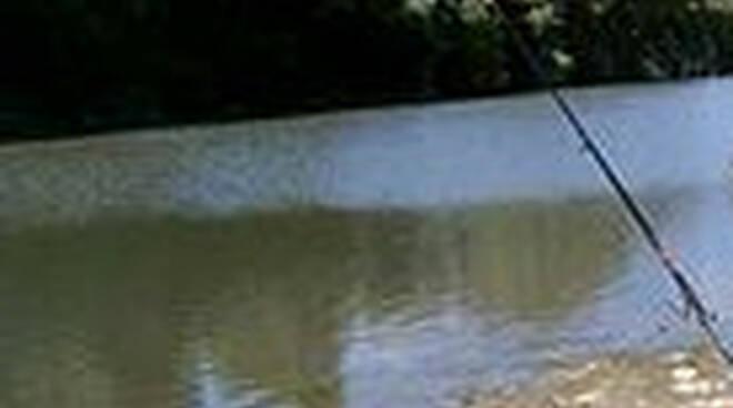 Pescatore senza licenza e cacciatore multati sul Garda e in Franciacorta
