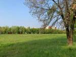 Brescia entro il 2021 arriva il nuovo parco di Sanpolino