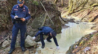 Odolo forestali sequestrano discarica abusiva nel torrente