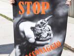 stop bracconaggio