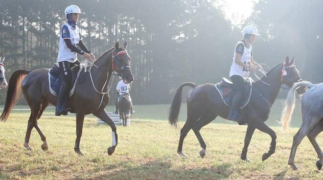 endurance equitazione