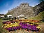 Fiori nella Rocca, dal 28 al 30 maggio a Lonato del Garda