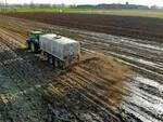 agricoltura fanghi tossici gessi defecazione