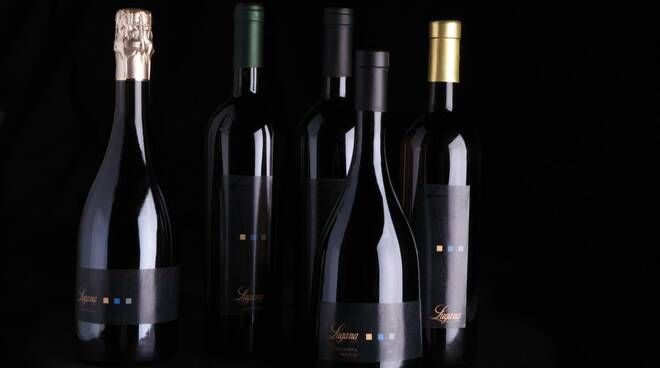 Bottiglie Lugana vite vigneto Garda