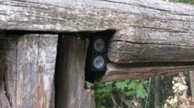 sensore contatore boschi foreste