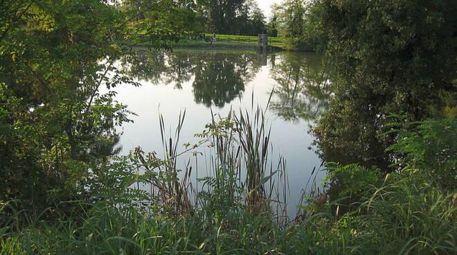 Desenzano Parco del laghetto