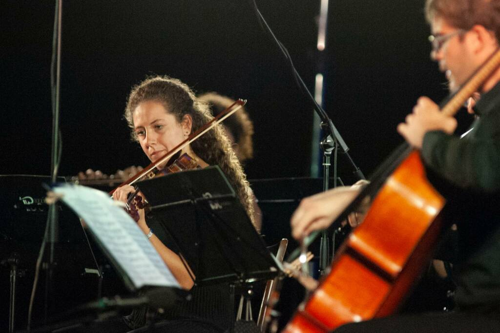 Orchestra Bazzini Consort