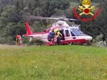 elicottero Vigili del Fuoco cane morso da rettile Saviore