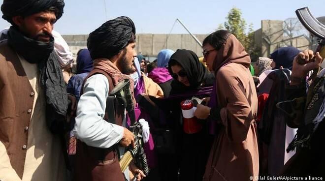 afghanistan donne